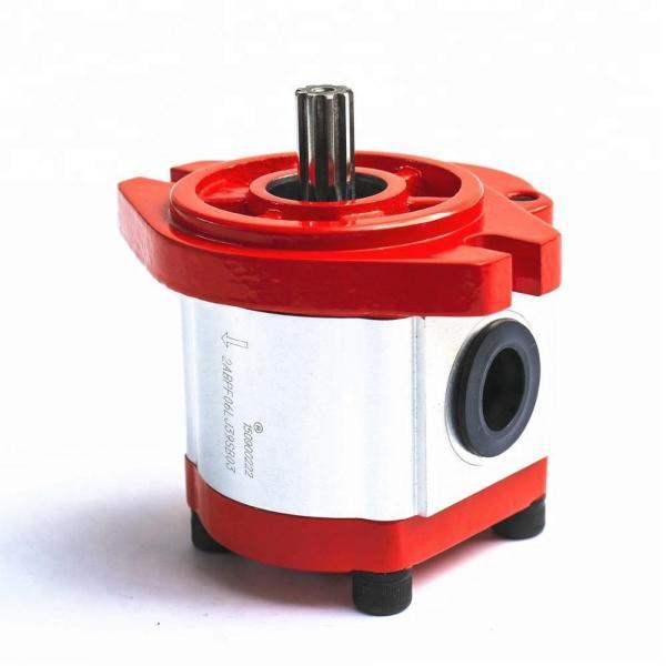 REXROTH PVV4-1X/122RA15UMC Vane pump #1 image