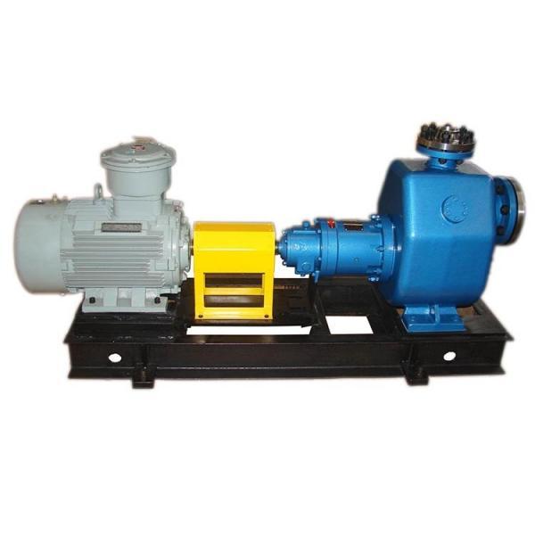 REXROTH PVQ21-1X/060-040RA15DDMB Vane pump #2 image